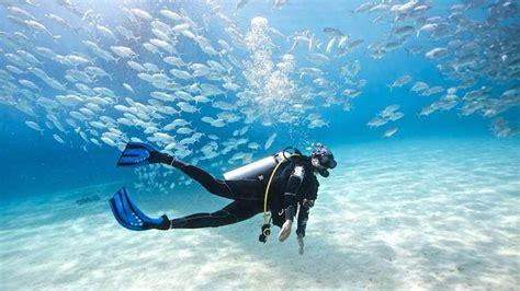 dive places best places to scuba dive in thailand scuba diving