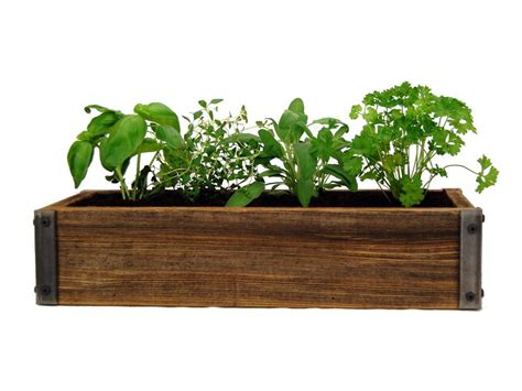 herb planter indoor indoor herb garden kits to grow herbs indoors hgtv