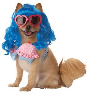 Katy perry dog costume petenvogue