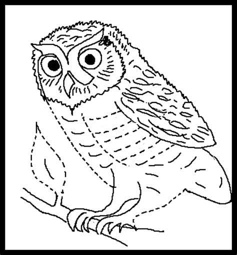 elf owl coloring page elf owl coloring page drawing coloring pages