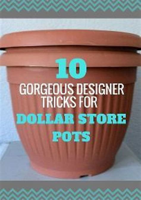 cheap garden pots and containers best 25 cheap plant pots ideas on