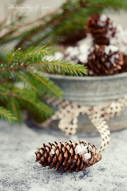 pin by donna ewing on christmas pinterest pin by donna smith on winter wonderland pinterest the
