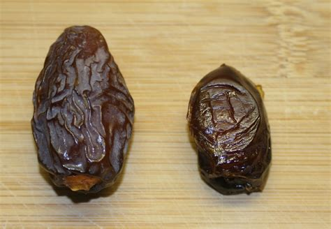 a date file date fruits duo jpg wikimedia commons