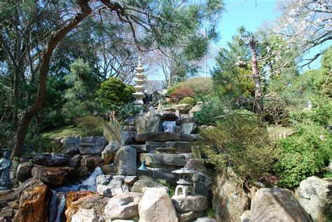 Hillwood Gardens by Panoramio Photo Of Hillwood Museum Gardens Japanese