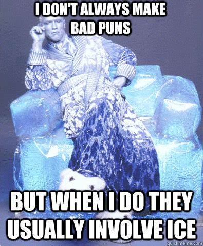 Mr Freeze Meme - i don t always make bad puns but when i do they usually