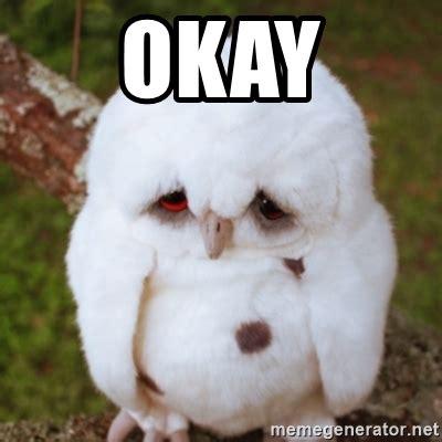 Sad Ok Meme - okay sad owl baby meme generator