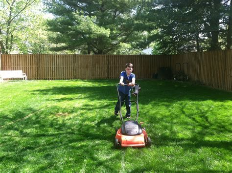 useful tips for cleaning your backyard ideas by mr right