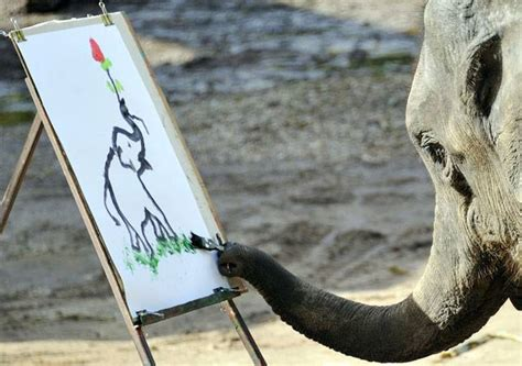 painting elephant can elephants really paint mnn nature network