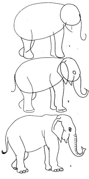 Brincando de desenhar! Como desenhar animais passo a passo