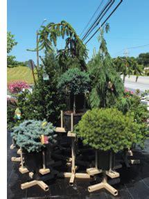 tree displays garden center magazine