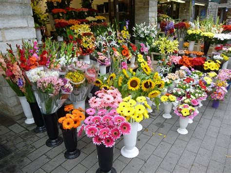flower shops near me commercial walk in cooler appliance repair los angeles