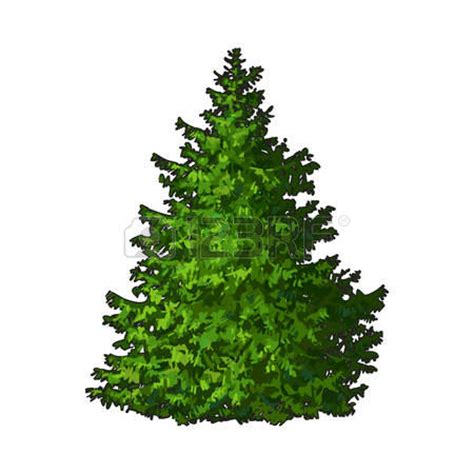 Evergreen Tree Clip by Evergreen Clipart Clipground