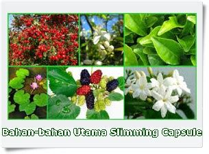 Ideal Herbal Pelangsing racikan herbal pelangsing terbaik tubuh ideal alami