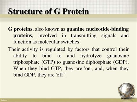 g protein coupled receptors function g protein coupled receptors and their signaling mechanism