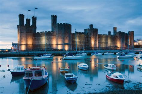 Train Wall Murals 5 ways to get wild about wales going places