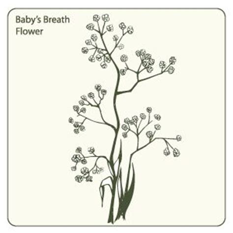 a breath of fresh flowers coloring book books 656 best coloring pages images on