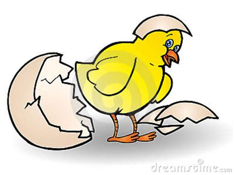 Easy 3d Drawing Software chick hatching stock photography image 13756482