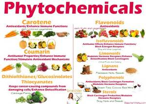 phytochemicals learn them all and know what they re good for nutrition professional resources