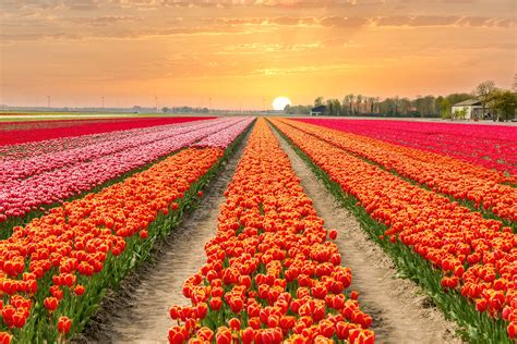 spring start spring equinox 2018 when is first day of spring why