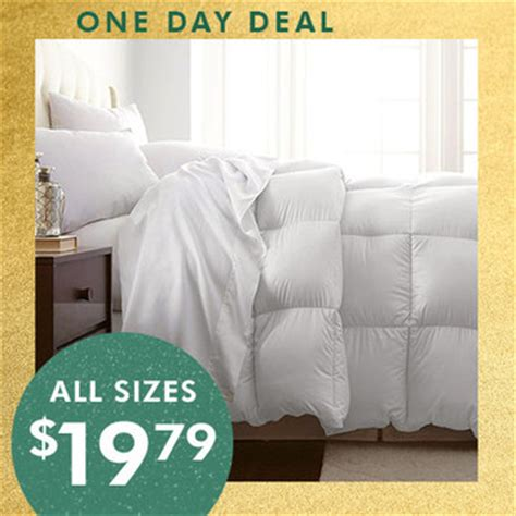 Comforter Clearance Sale by Alternative Comforters Only 19 79 Mybargainbuddy