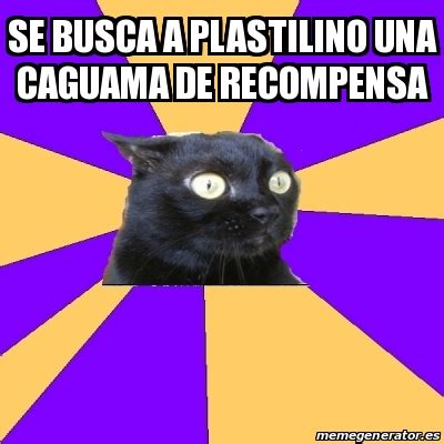 Anxiety Cat Meme Generator - meme anxiety cat se busca a plastilino una caguama de