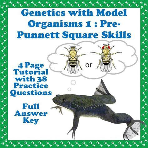 tutorial questions on genetics 235 best school genetics images on pinterest life