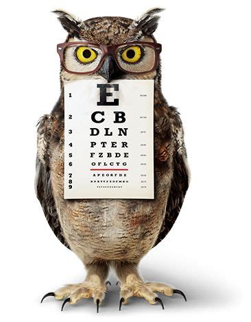 who voices the owl in americas best commercial americas best optical actress owl america s best
