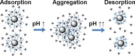 j protein chem impact factor kayitmazer b archives bogazi 231 i department