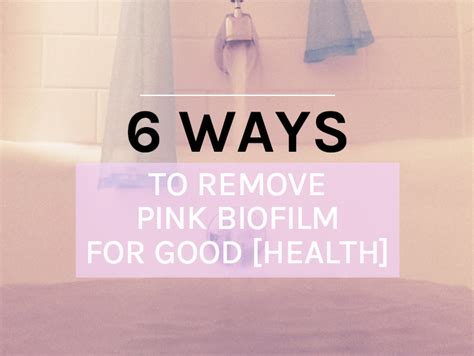 Pink Bacteria In Bathroom by 6 Ways To Remove Pink Biofilm For Health The