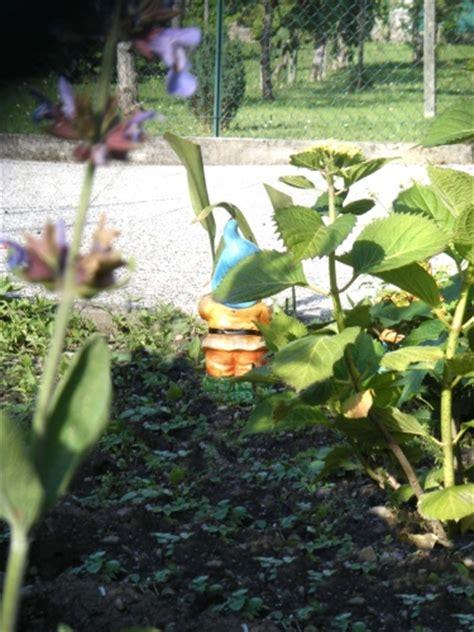 foto nani da giardino i nani da giardino casa design