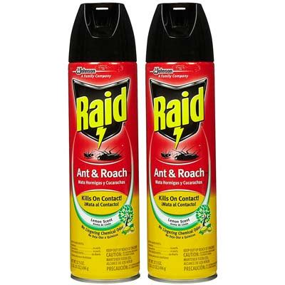 best insecticide for roaches how to get rid of cockroaches top 10 roach products