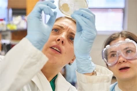 Uconn Mba Part Time Application by Uconn Joins National Microbiome Initiative Uconn Today