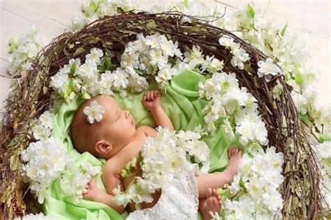 imagenes hermosas unicas beb 233 durmiendo en un nido con flores blancas 62978