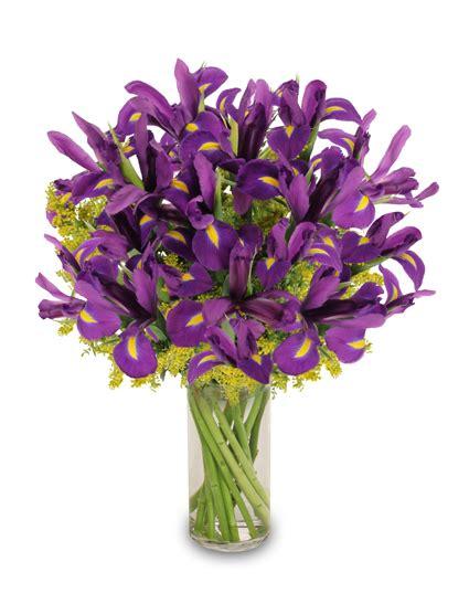 Purple Flowers In Vase by Best 5 Reasons To Send Flowers In March