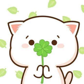 animasi gambar kartun kucing lucu  wallpaper hp