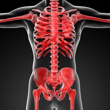 dolore gabbia toracica dolori intercostali lato destro ossa da cosa possono