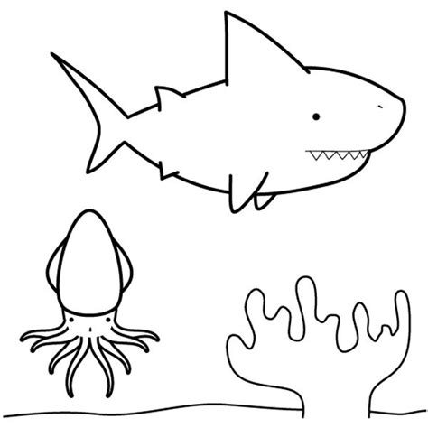 imagenes para colorear tiburon tibur 243 n buscando calamar dibujo para colorear e imprimir