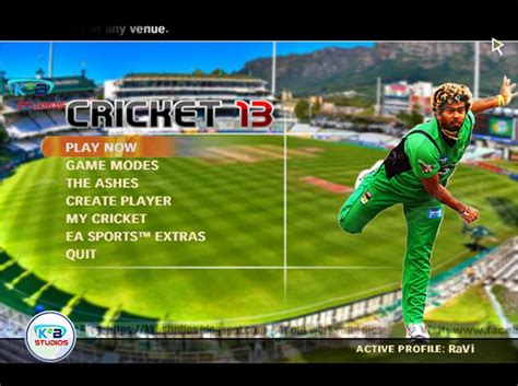 ea games free download cricket 2010 full version free download software games and movies full version for