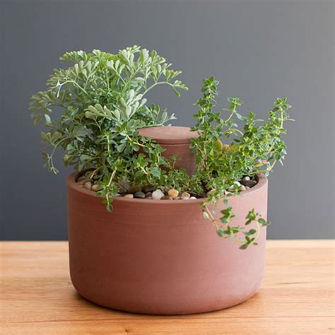 self watering planter self watering planter by joey roth cool hunting