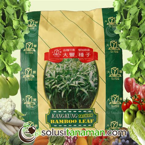 home solusi tanaman