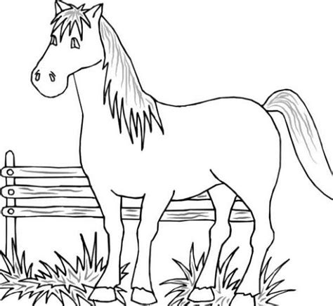coloring pages animals horses printable farm animal coloring pages coloring me