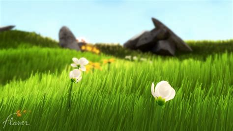 Gamis Big Flower ranked the 20 most beautiful playstation made