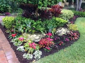 tropical bromeliad garden design landscape designs