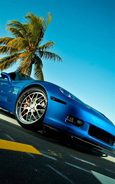 porsche with tree blue porsche car palm tree android wallpaper free