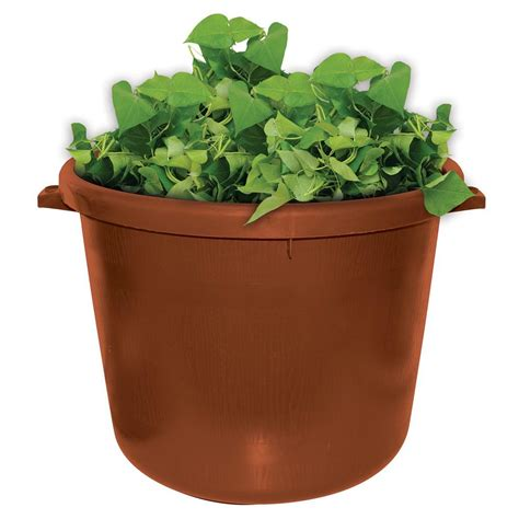 City Pickers Planter by Emsco City Pickers Spud Tub 17 5 Gal Garden Potato