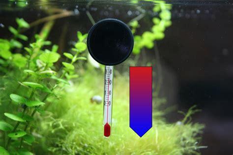 Temperatur Im Aquarium by Aquarium Temperatur Hoch 10 Tipps Zur K 252 Hlung Des Warmen