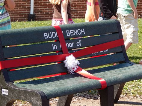 buddy bench story valley view elementary school christian s buddy