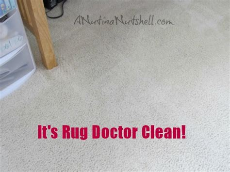 rug doctor not turning on turn carpet remnants into rugs kenneth woods