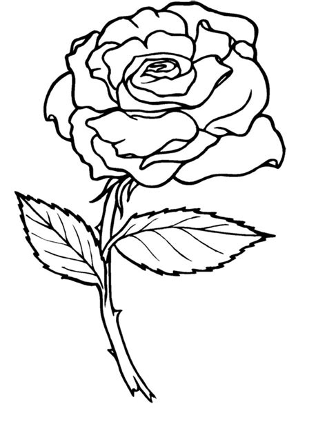 rose coloring pages coloring lab