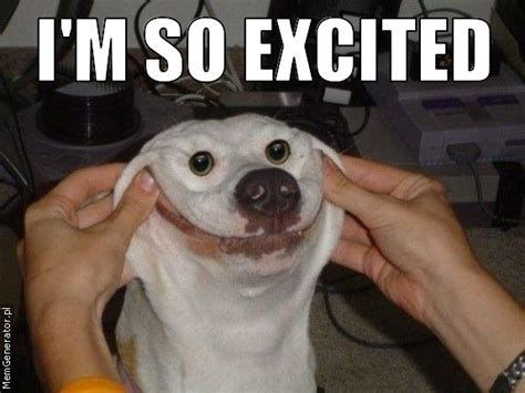 So Excited Meme - overly excited dog meme
